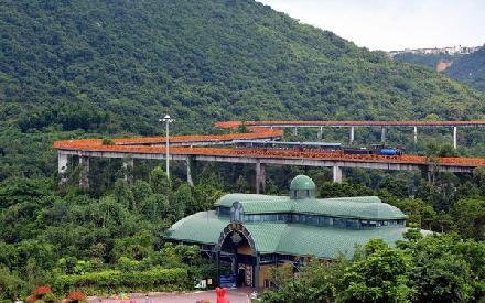 深圳漫步:东部华侨城的茶溪谷图片